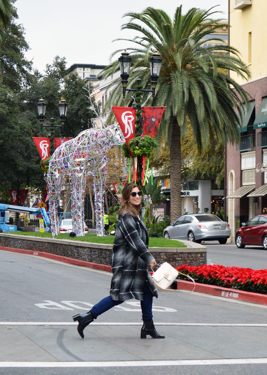 san jose holiday style