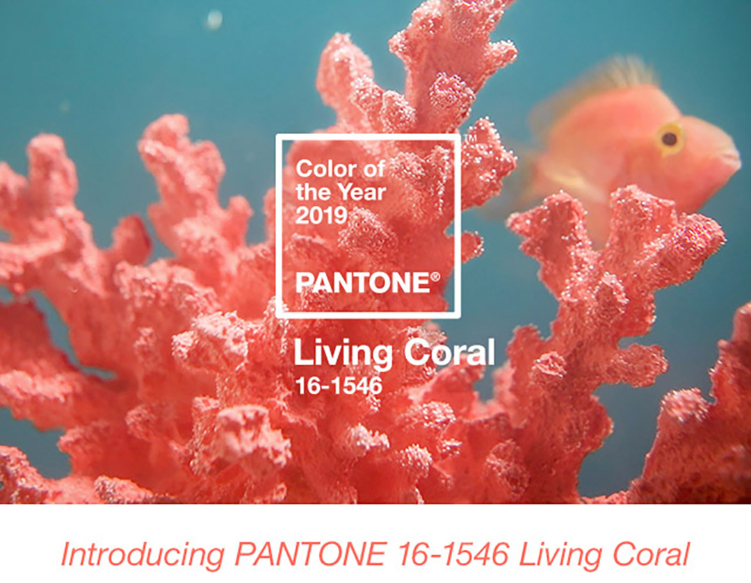 pantone color of 2019 living coral color of the year