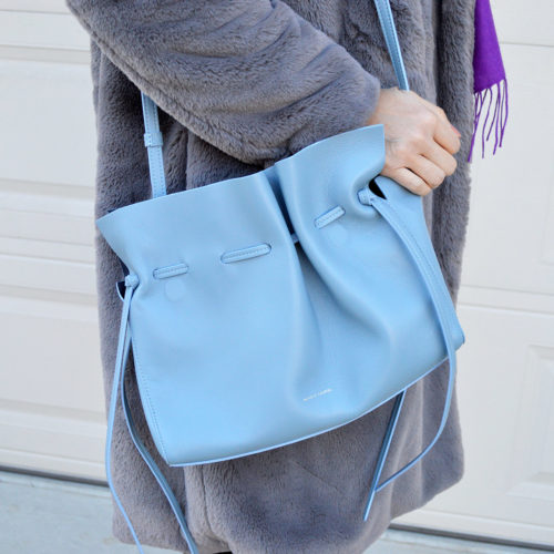 mansur gavriel protea bag review