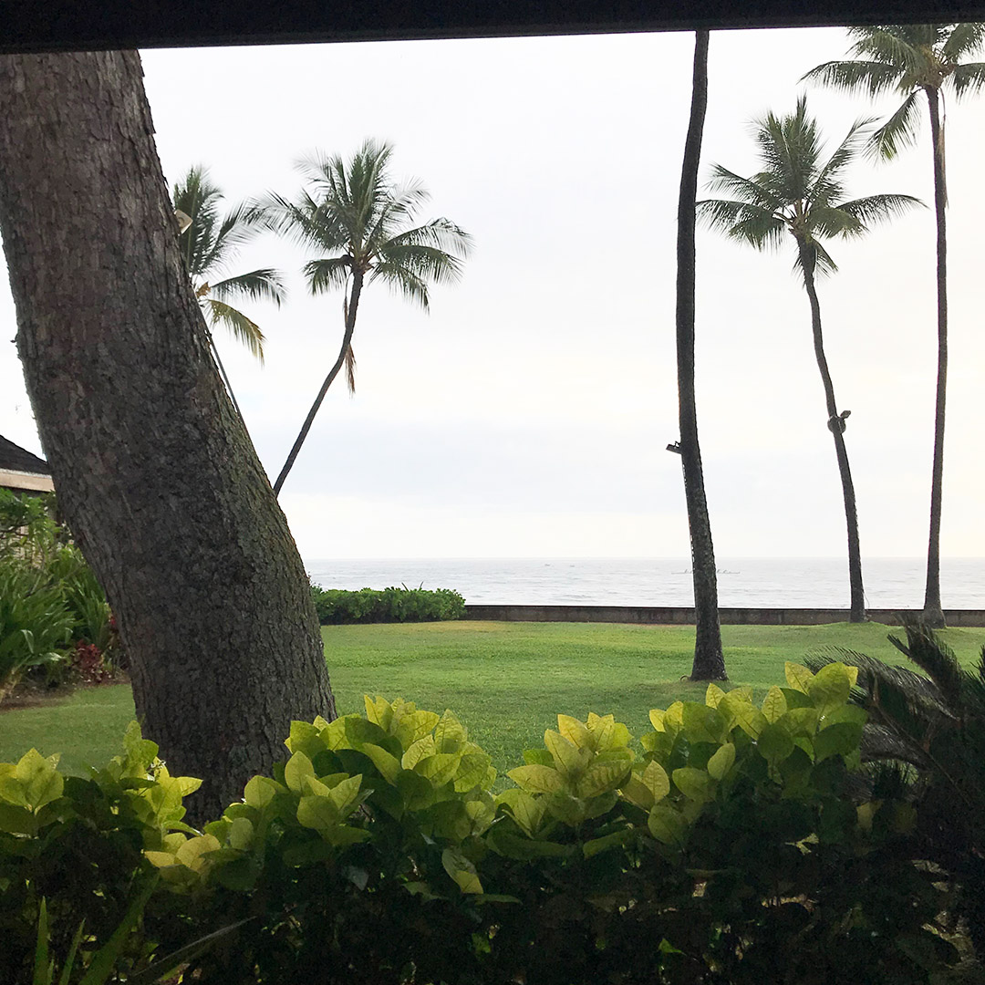 view from kona inn hawaii