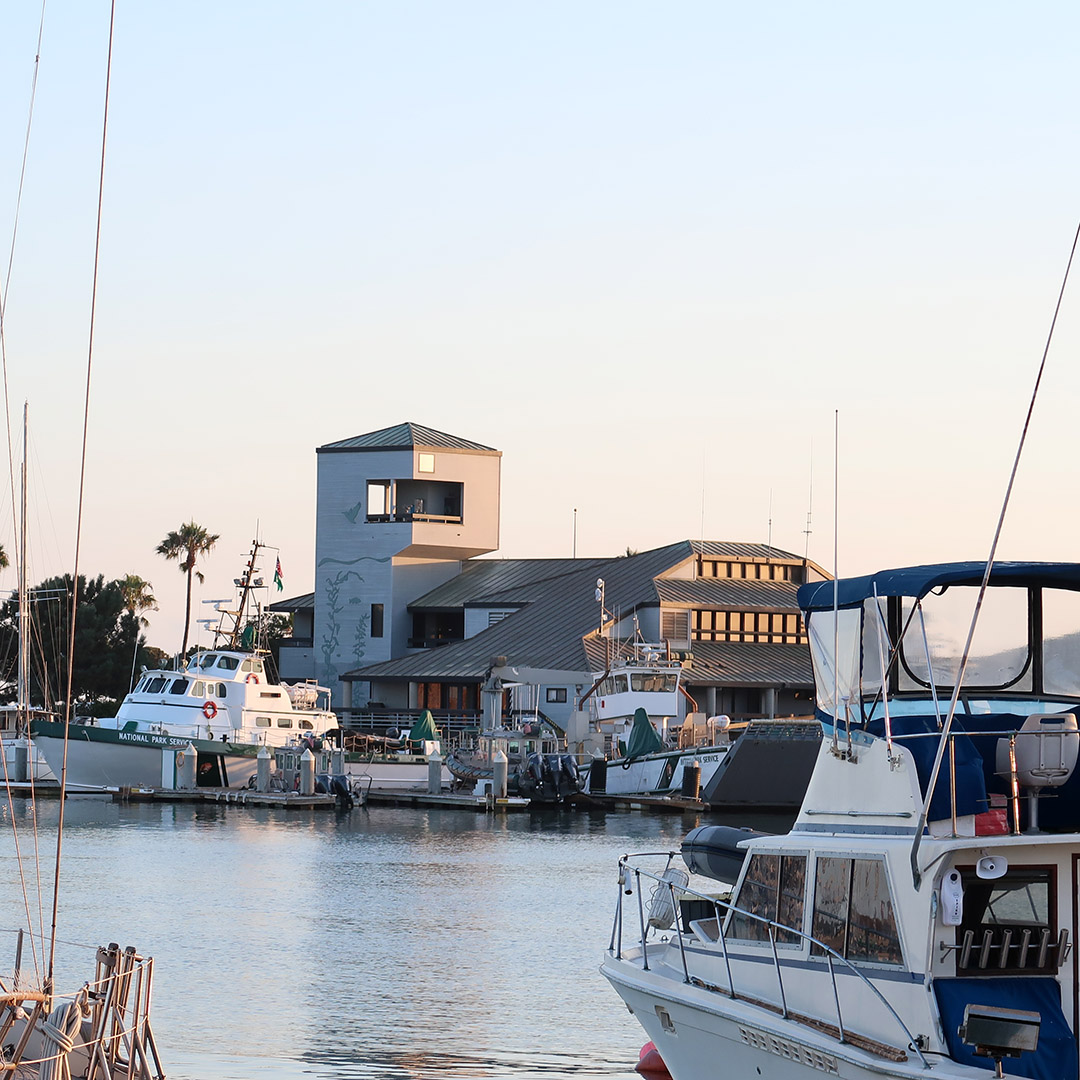 ventura boat harbor