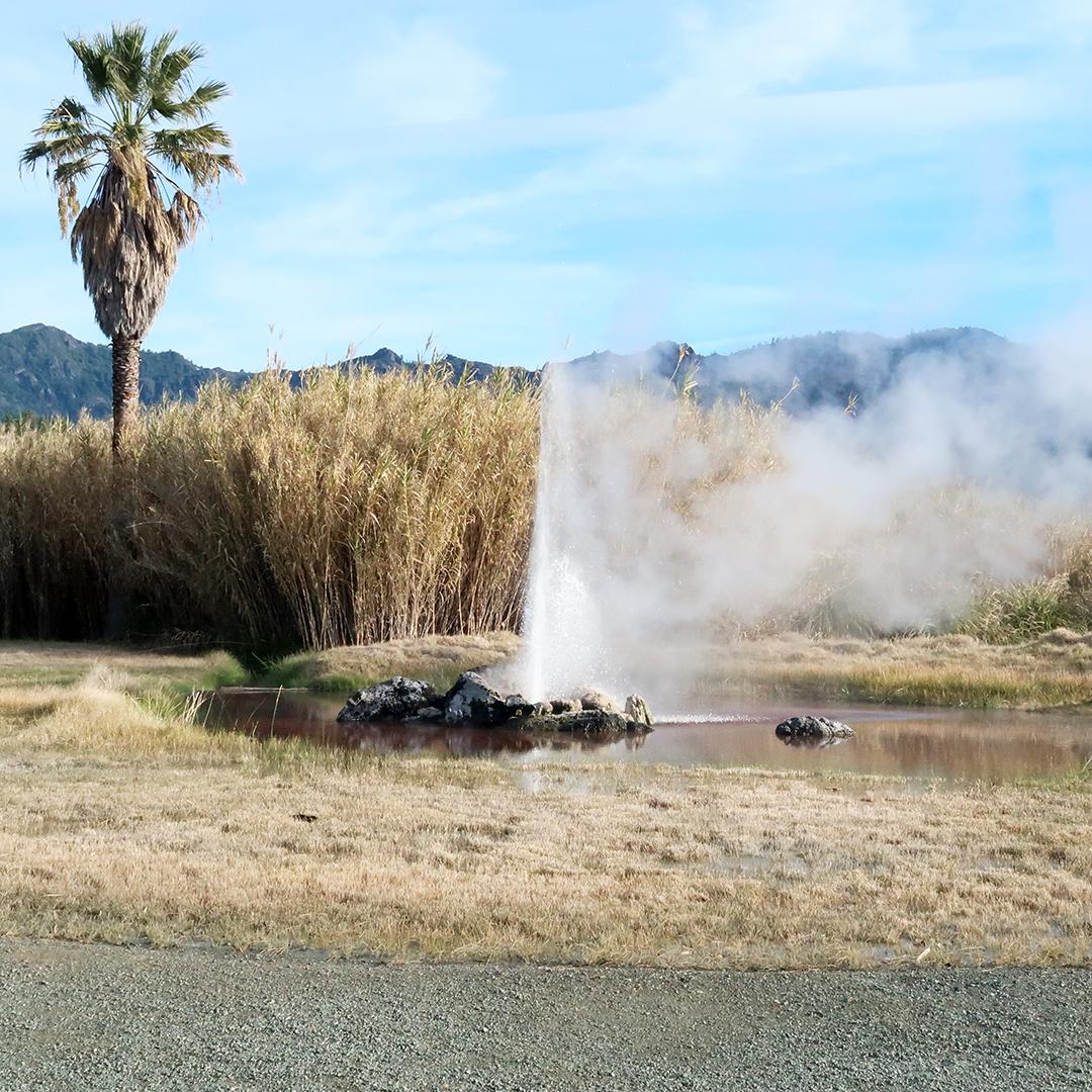 old faithful geyser calistoga review