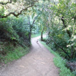 Almaden Quicksilver Park Hacienda Trail