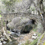Alum Rock Park hiking trails